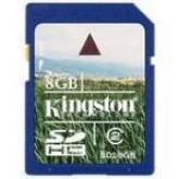 8 GB, Secure Dijital High Capacity SDHC Kart